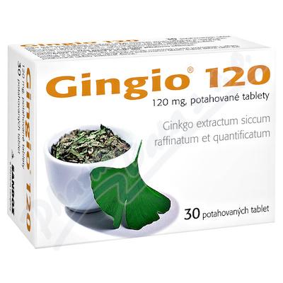 GINGIO 120