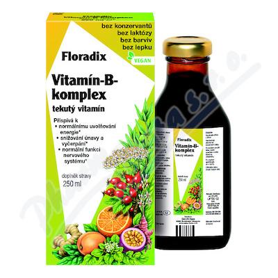 Salus Floradix Vitamin-B-komplex 250ml